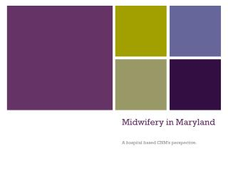 outline midwifery education according to icm guidelines 2013