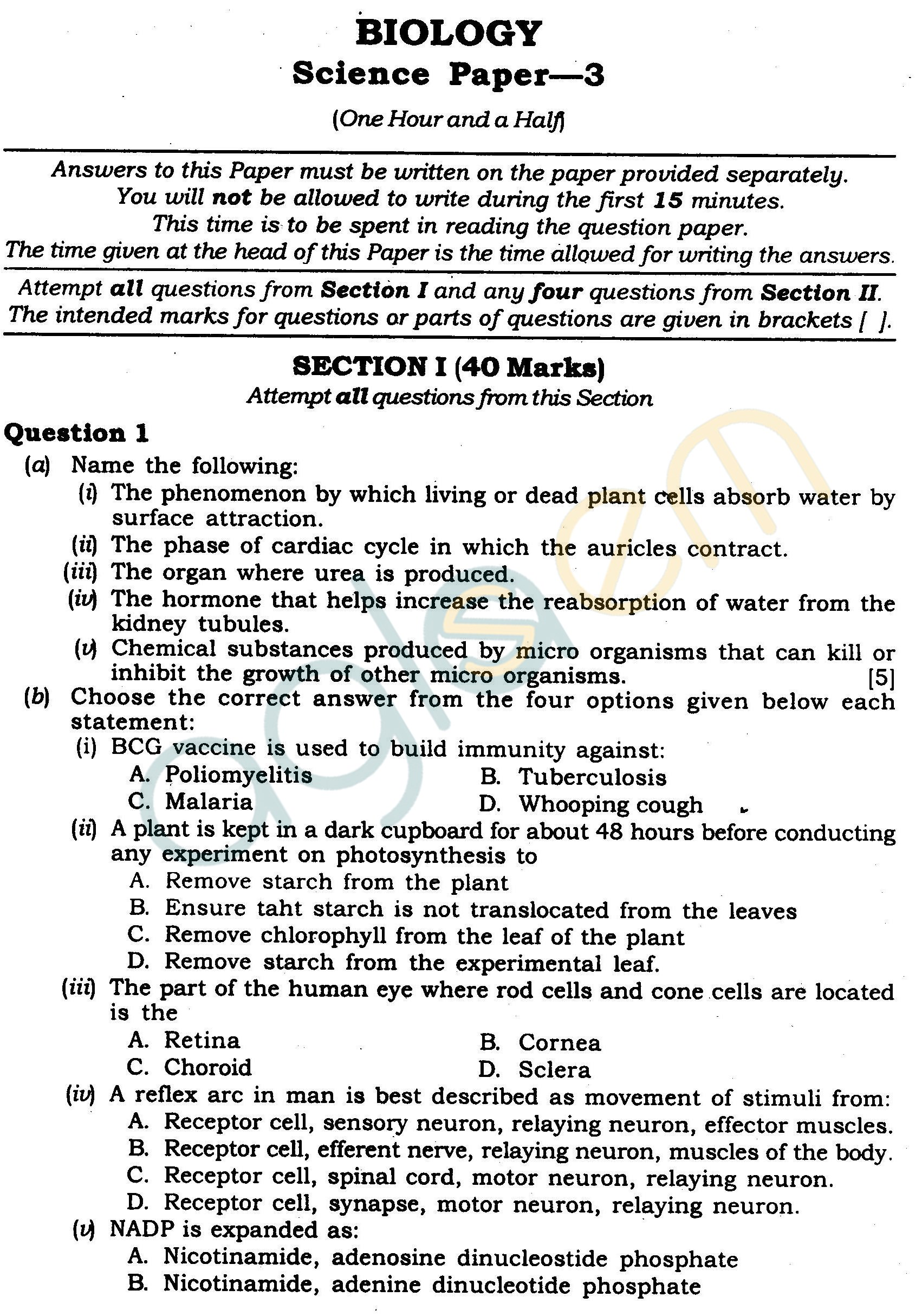 natural science grade 9 papers 2019 pdf download
