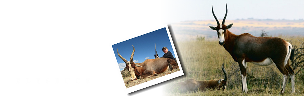 south african bow hunting guide tracker