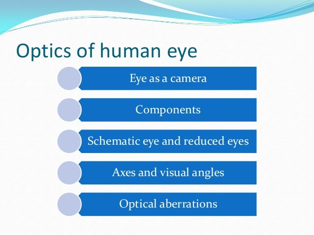 optics of the human eye pdf