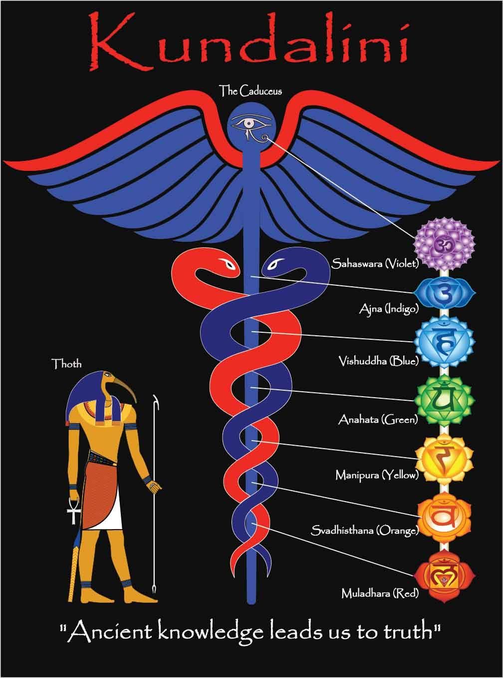 the hidden power in humans chakras and kundalini pdf