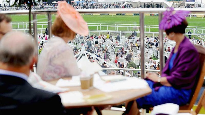 uk horses races prices pools guide